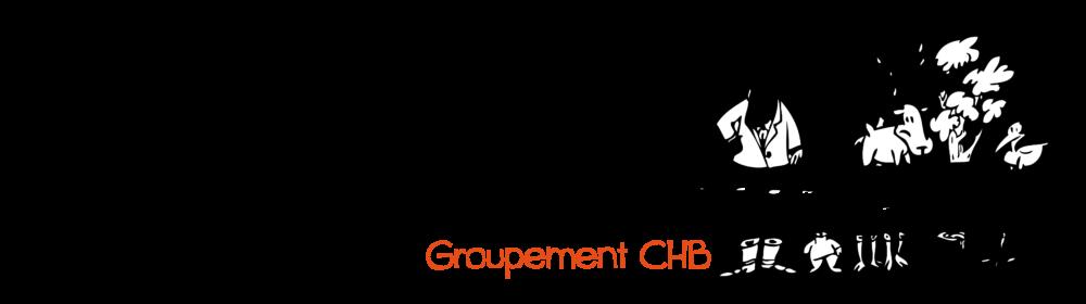 Groupement CHB